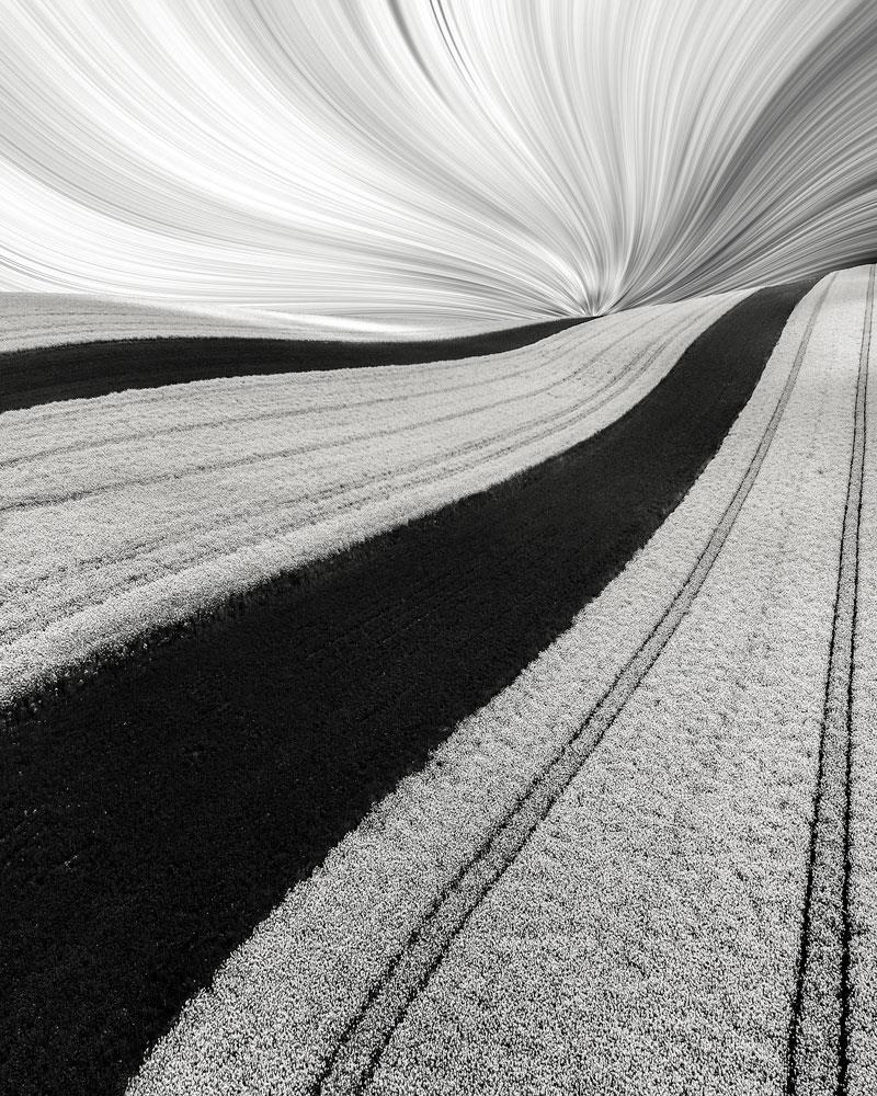 award won photography spring zebra by lukasz rajs