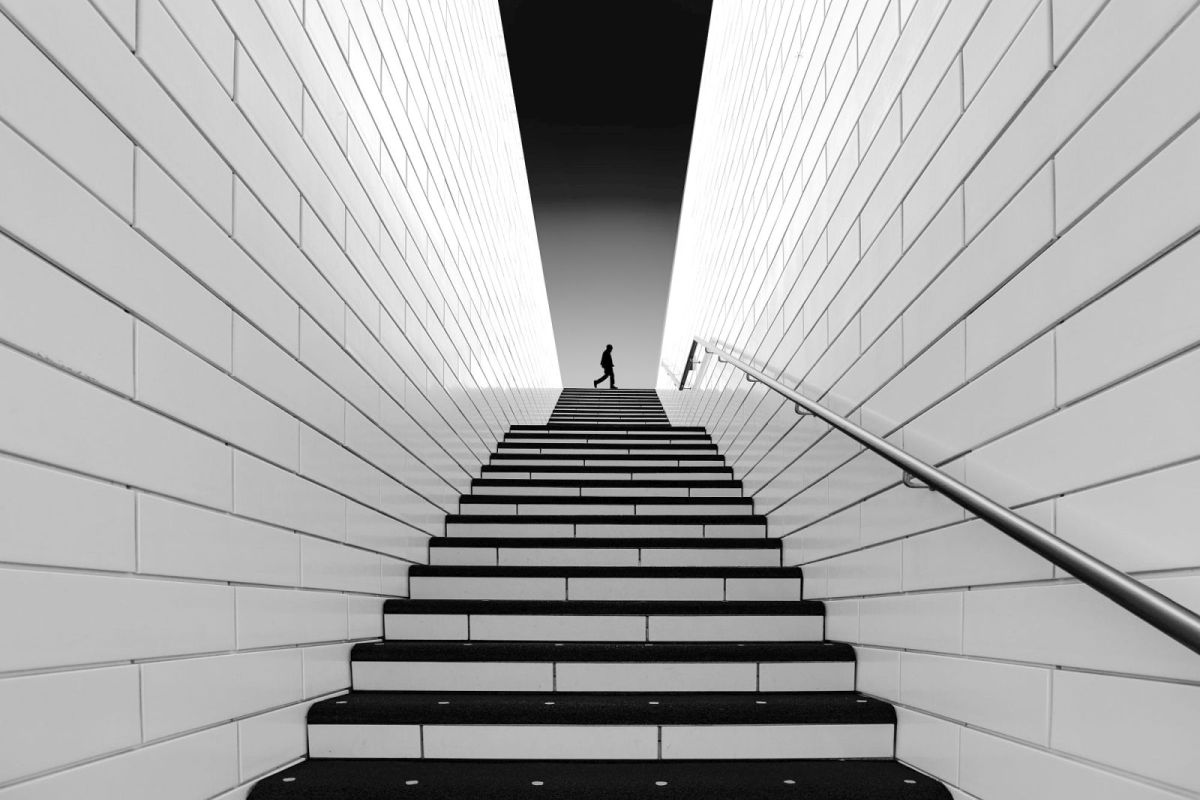 worms eye view photography by inge schuster