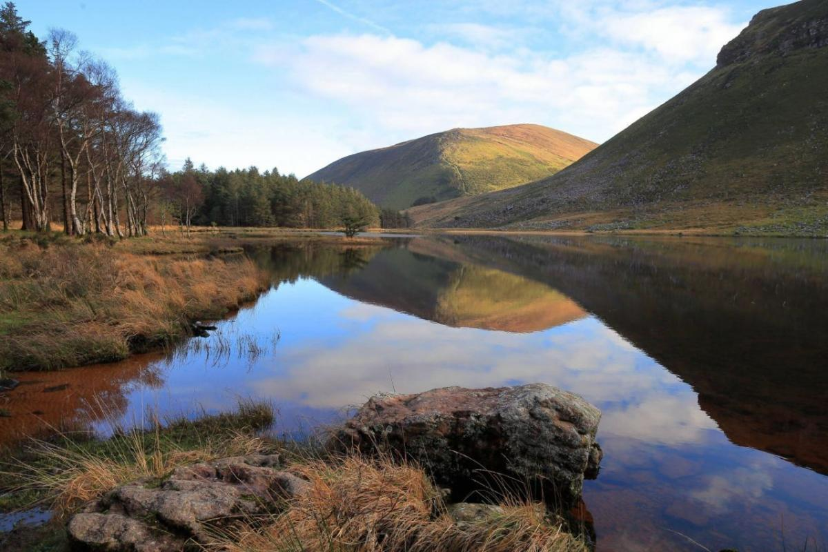 readers photography competition winter day reflection by donal daly