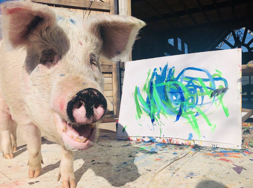 artistic pig pigcasso painting greenshots