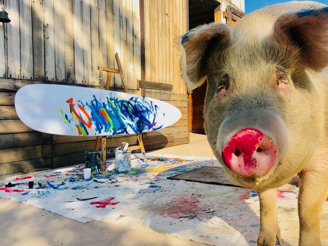 pig painter named pigcasso