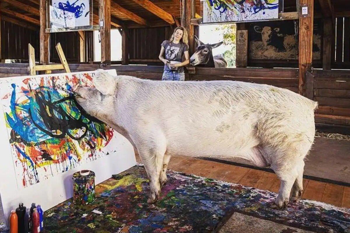 pigcasso painting work