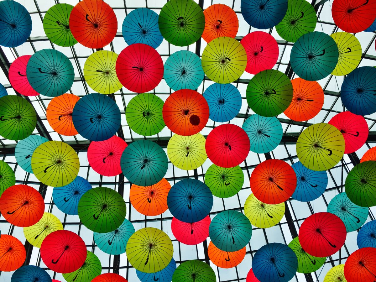 pattern photography umbrella by kevin richer