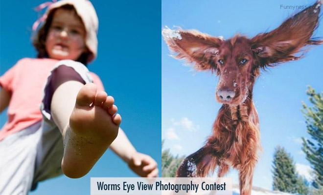 https://news.webneel.com/file/imagecache/preview/blog/2021/worms-eye-view-photography-contest.jpg